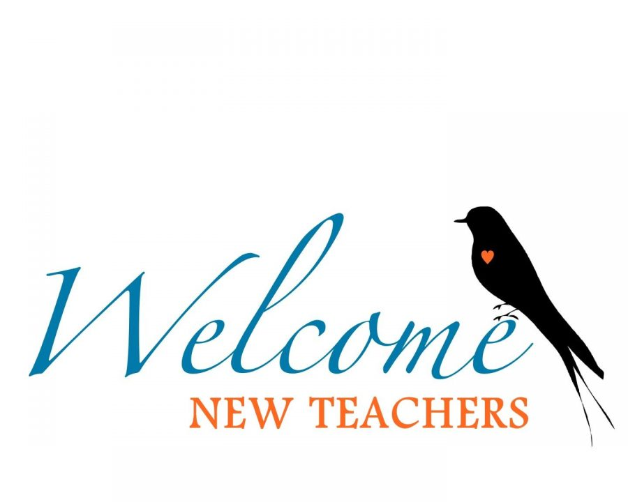 New+Teachers