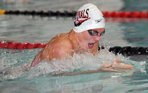 Carter Briggs and Jacob Nedder on Pella Boys Swimming 2018-2019