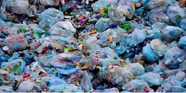 Sophomores Speak Out: Plastic Pollution