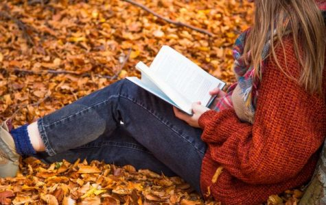 Top 5 New Books to Fall Into