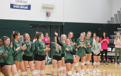 The 2019 Lady Dutch Volleyball season