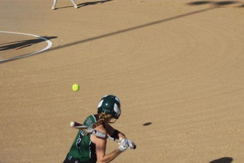 Softball Starting Up
