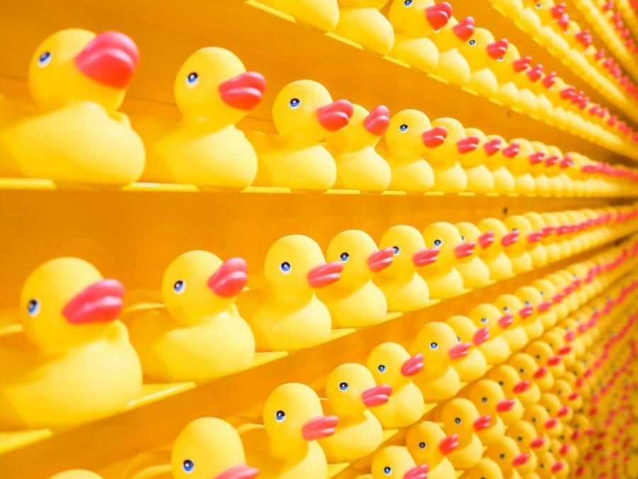 Ducks+in+a+Row